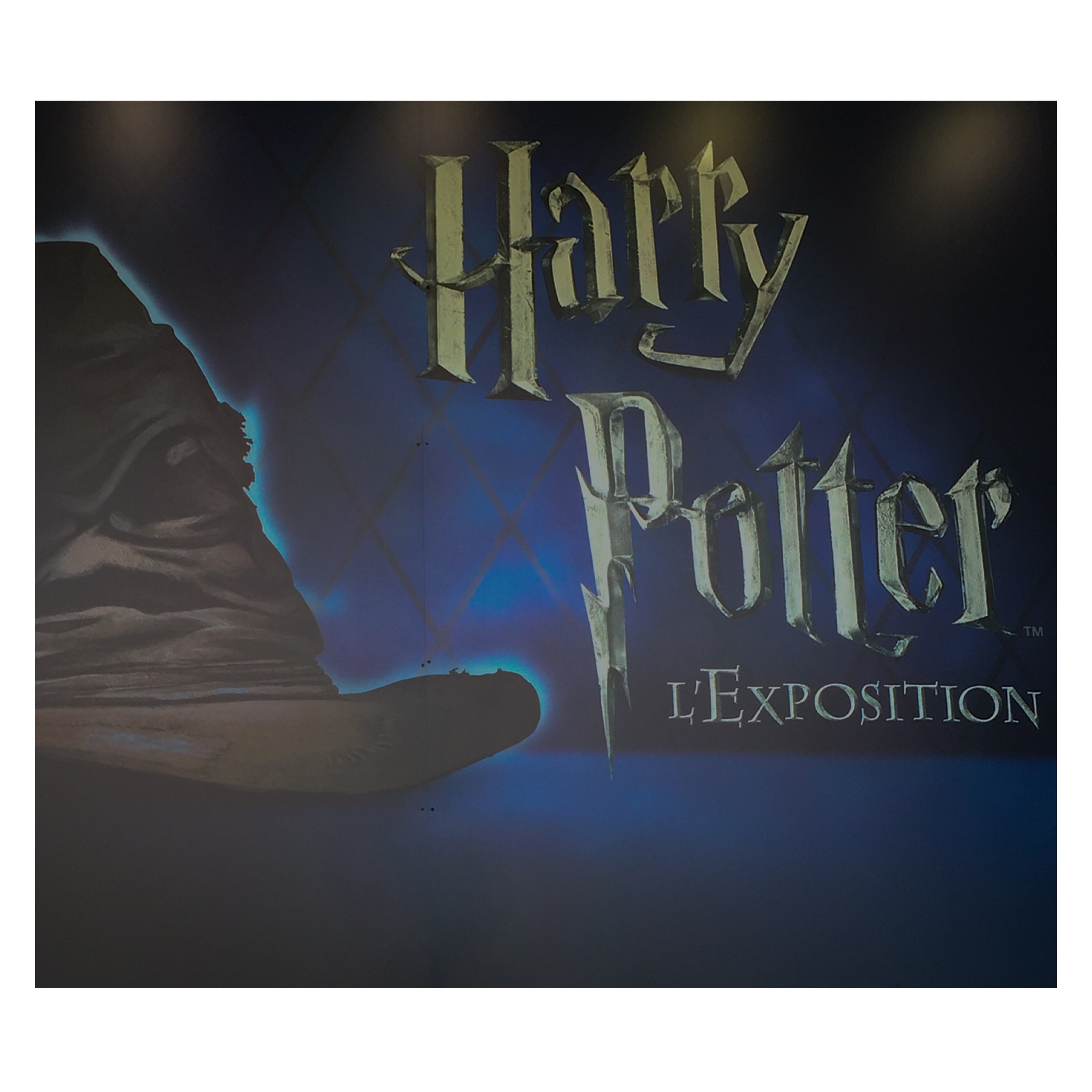 Harry potter – l'exposition