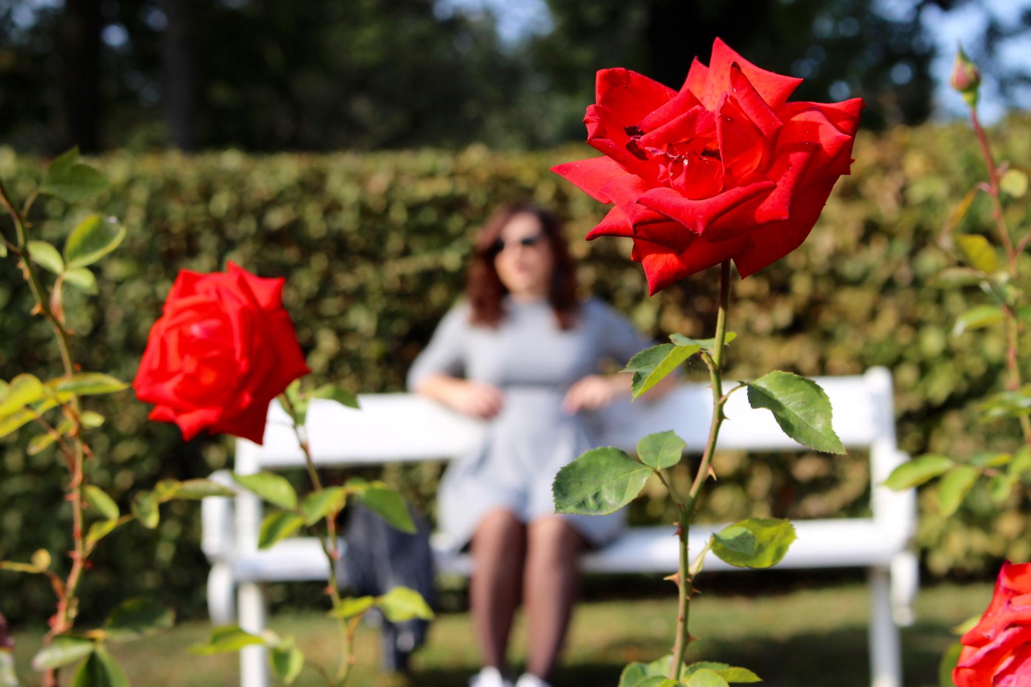 pois Mademoiselle E – fleurs 7