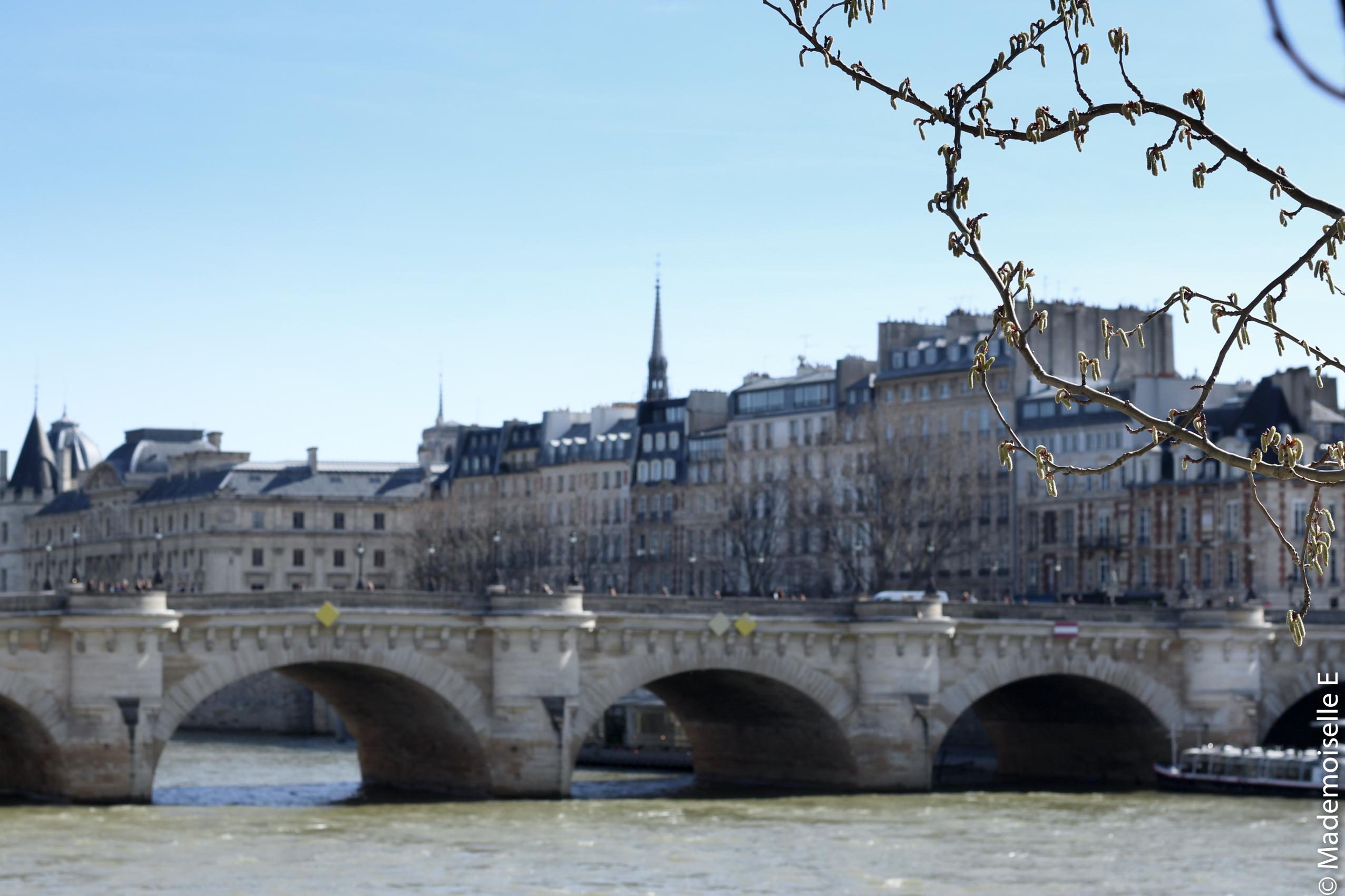 bonheurs #3 Paris seine mademoiselle-e