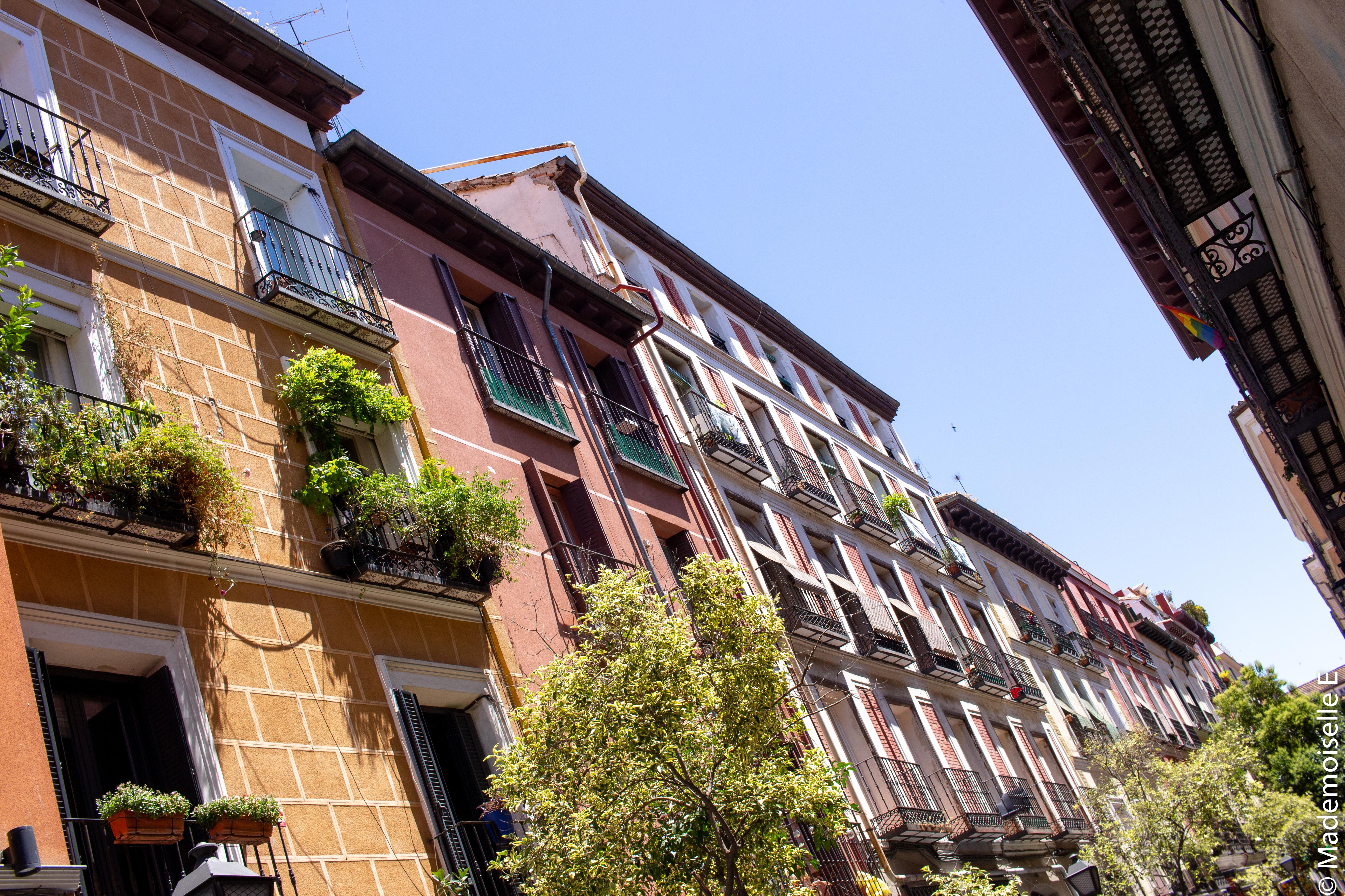 madrid-city-guide-bonnes-adresses-malasana-mademoiselle-e
