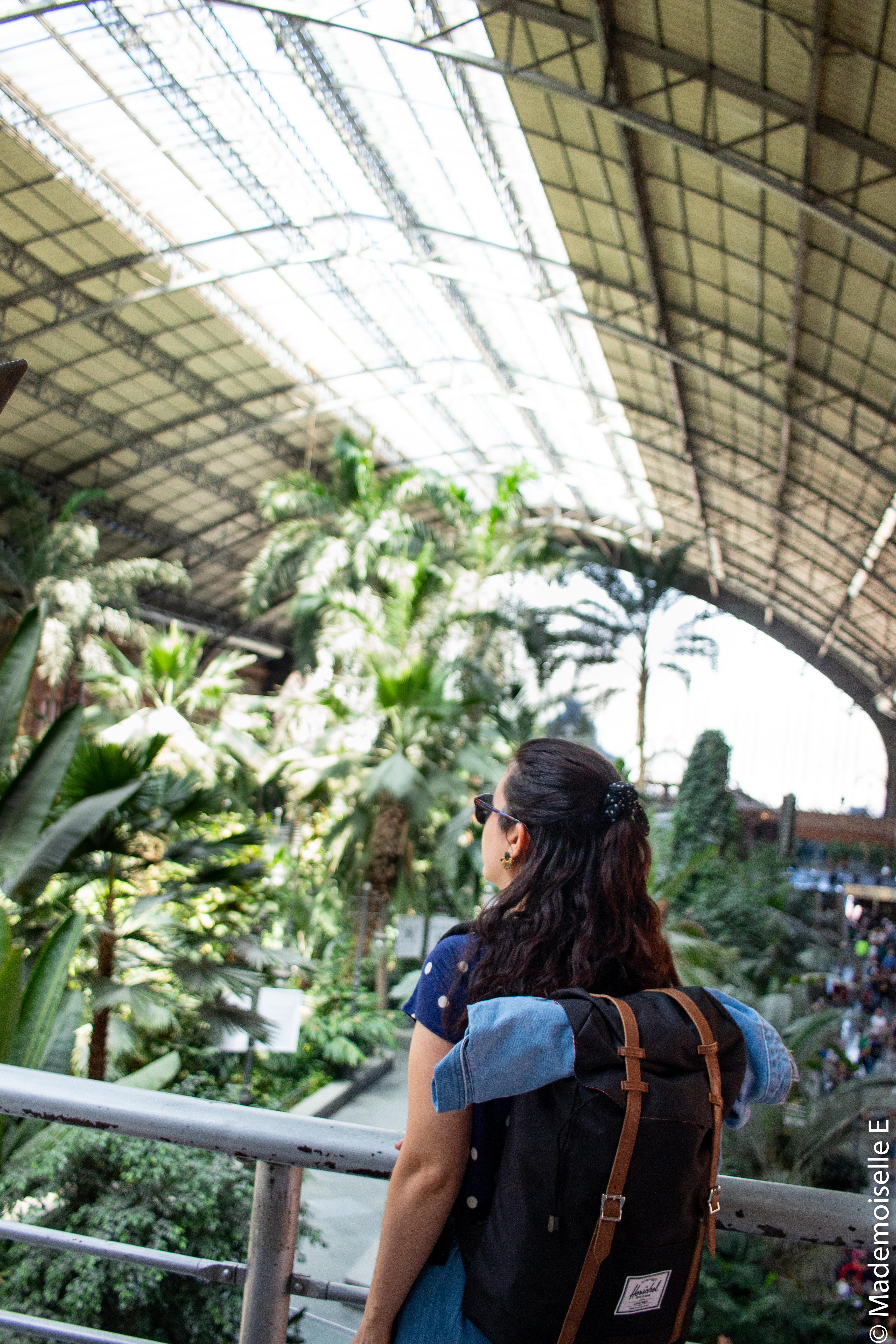 madrid-city-guide-bonnes-adresses-jardin-tropical-atotcha-mademoiselle-e